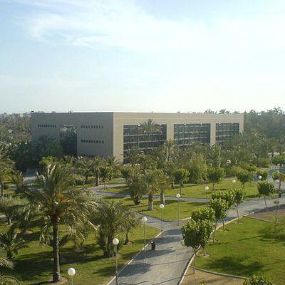 Universidad Miguel Hernández de Elche [UMH]
