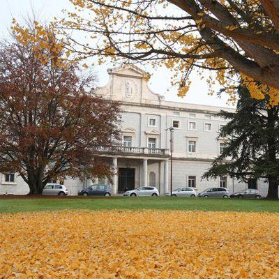 Universidad de Navarra [UNAV]