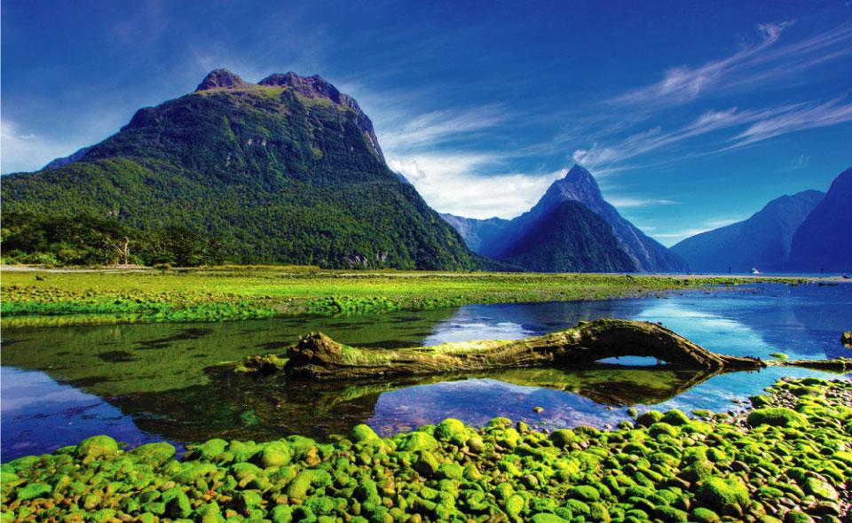 Estudiar en Nueva Zelanda