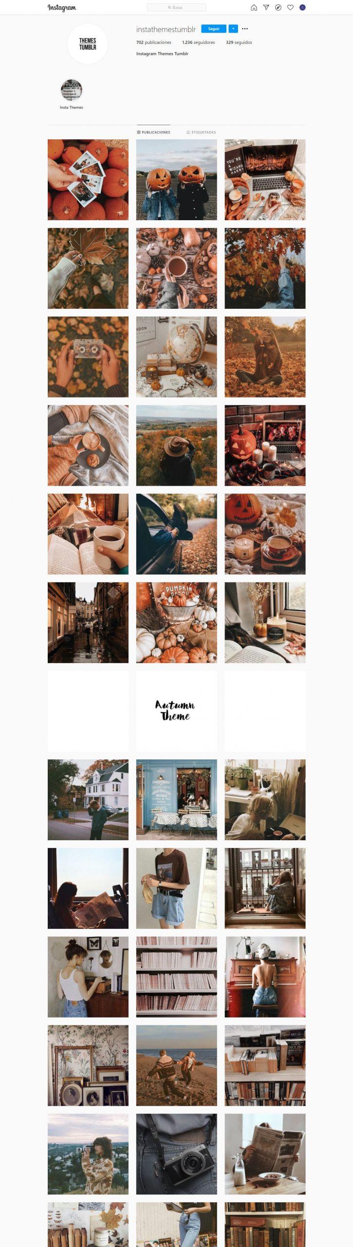 Instathemetumblr Feed Instagram